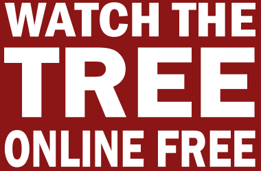 Watch Stanford Football Online Free